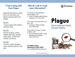 the contagious disease of the bubonic plague Bubonic plague is the most common type of plague — an infectious disease caused by bacteria known as yersinia pestis the disease, which affects the lymphatic system (lymph nodes, ducts.