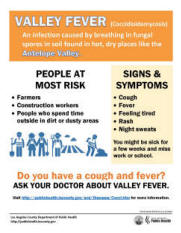 valley fever Behcet's disease is an autoimmune disease that results from damage to blood   an infection caused by the fungus coccidioides, also called valley fever.