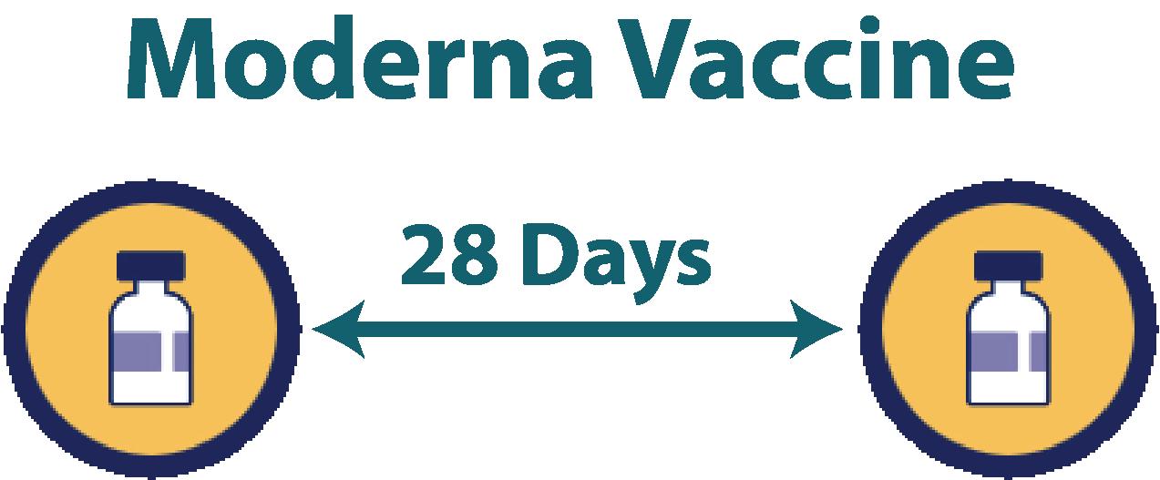 Interval between doses of vaccine
